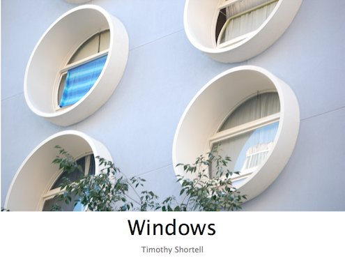 Timothy Shortell - Windows