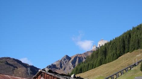 July 31, 2013 - Historic Ecology