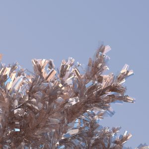 Pastel Toned Image of a Softly Rendered but Shinny Tree Leaf Structure, on a Soft Blue Background